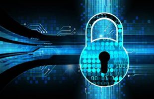 A Government response to cyber security